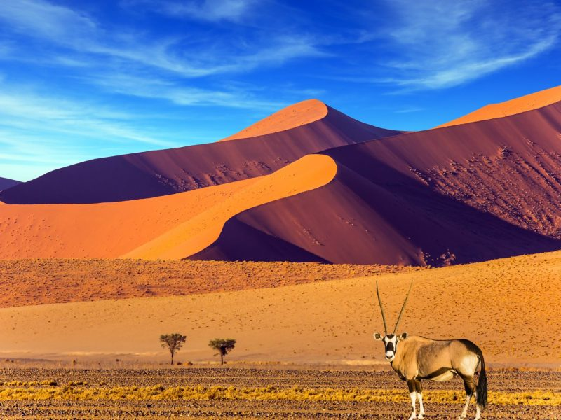 Cosa-vedere-in-Namibia